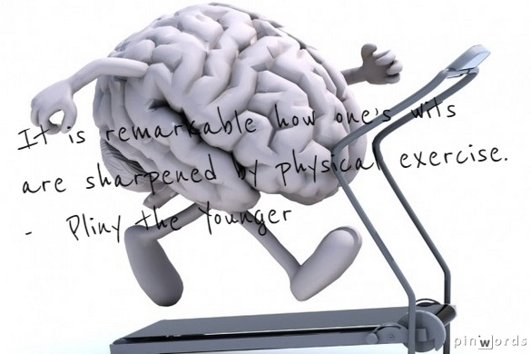 Fitness = Intelligence?