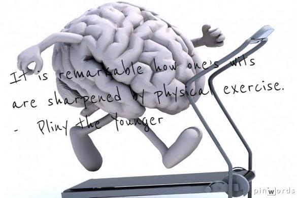 Fitness = Intelligence?