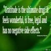 Develop a Gratitude Habit
